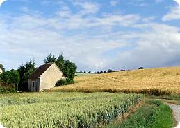 La Beauce, en Eure et Loir